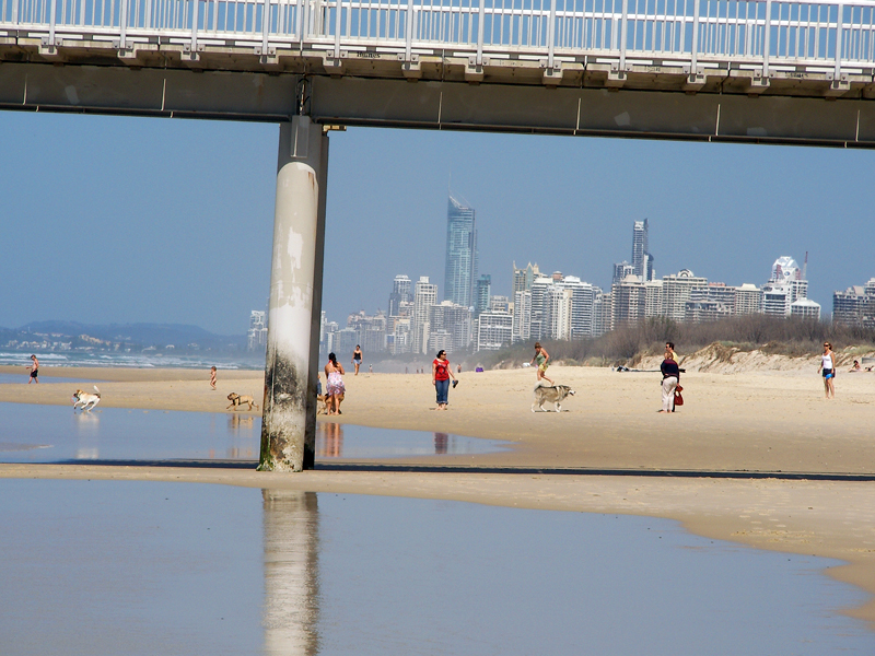 The Spit ドッグビーチです。