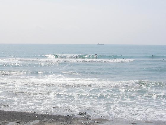 2009/10/04 御前崎メロン