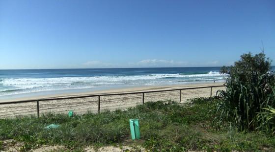 2010/05/05 9:33 Surfer's