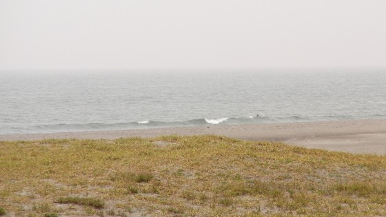 2010/10/15 9:24 遠州灘某所