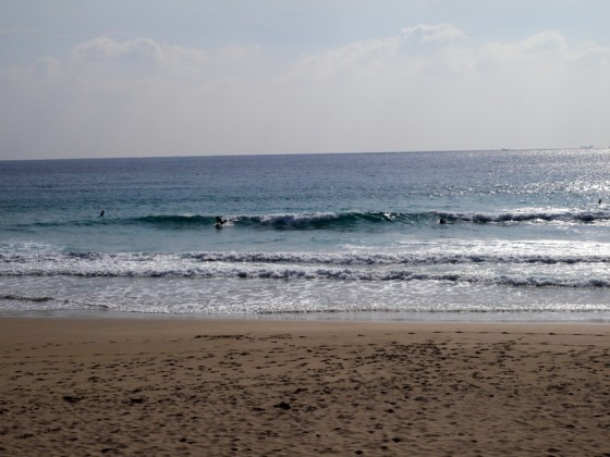 2013/01/17 11:46 多々戸浜