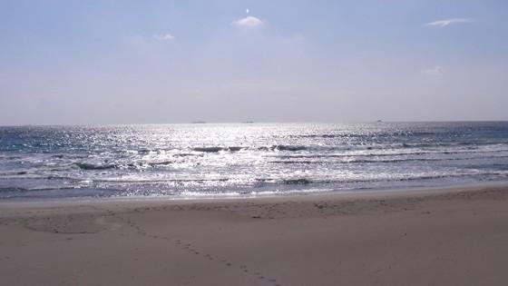 2013/11/20 11:20 多々戸浜