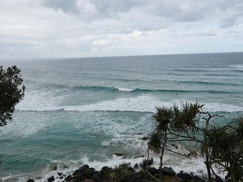2019/02/27 グリーンマウント(QLD州) オーストラリア