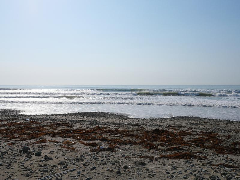 2019/05/24 7:25 片浜海岸(牧之原市)