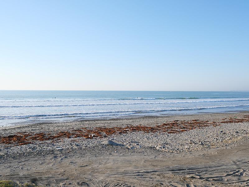 2019/05/25 5:53 片浜海岸(牧之原市)