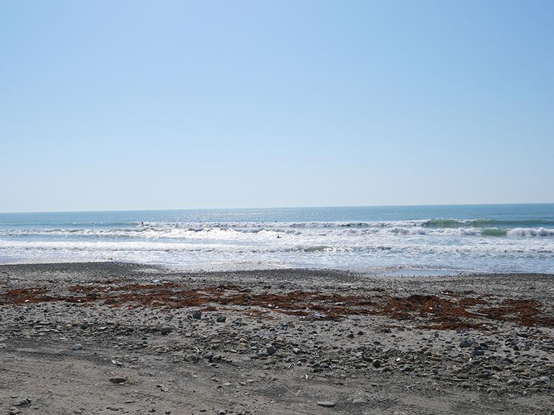 2019/05/25 8:20 片浜海岸(牧之原市)