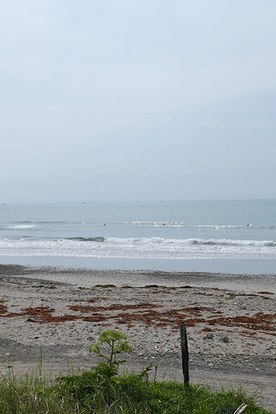 2019/06/04 9:02 片浜海岸(牧之原市)
