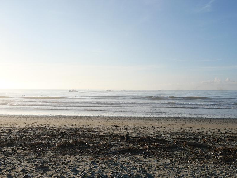 2019/08/07 5:54 片浜(牧之原市)