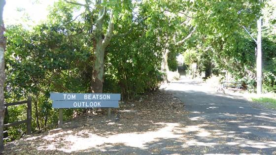 2015/03/05 TOM BEATSON OUTLOOK