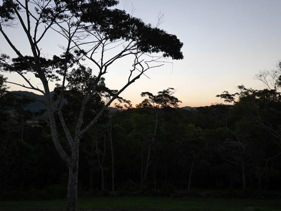 EUMUNDI Sunshine Coast QLD Australia