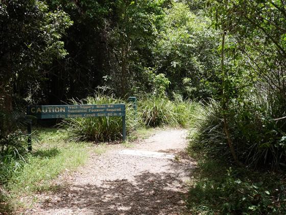 Mapleton Falls National Park Sunshine Coast Australia