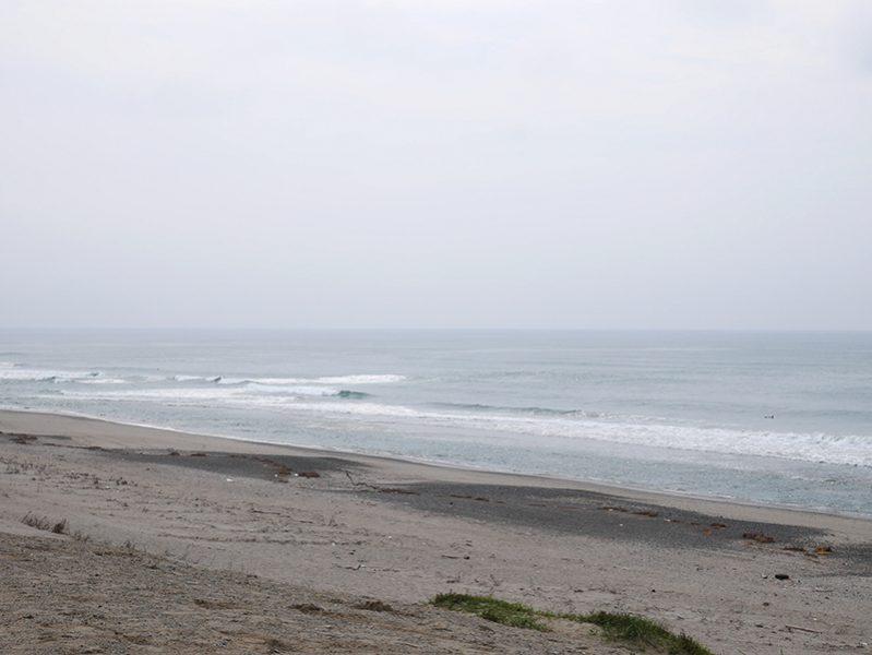2016/09/17 10:17 浜岡砂丘