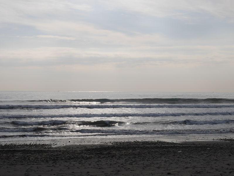 2016/11/08 8:37 片浜