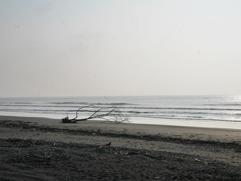2017/08/30 7:18 片浜