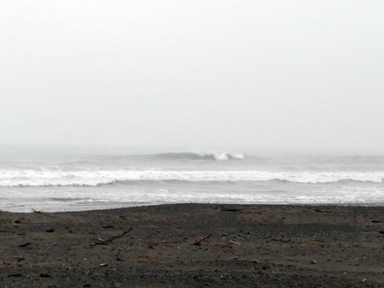 2010/04/05 13:24 静波