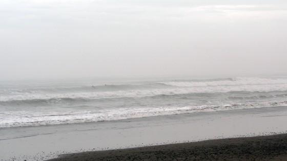 2010/04/05 16:24 静波