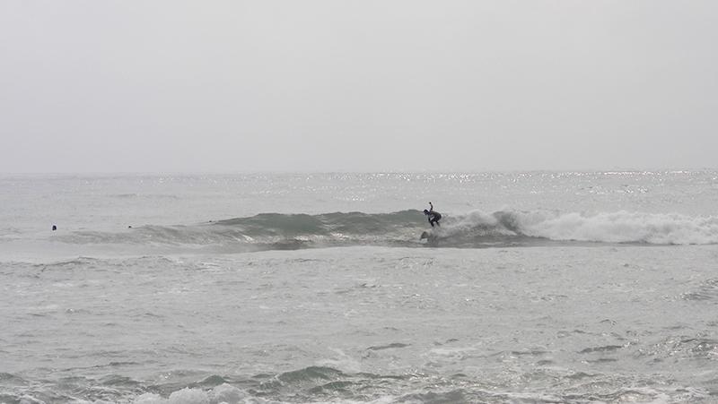 2018/10/14 10:11 伊良湖(ロコ)