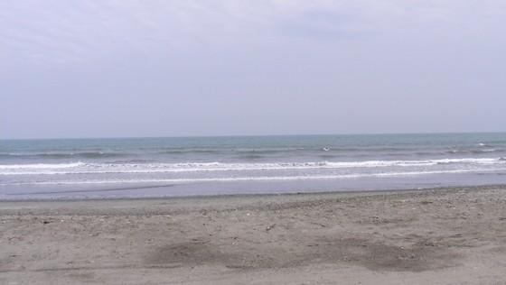 2015/05/18 14:49 片浜