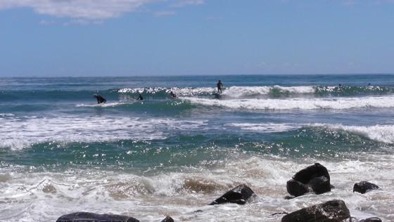 2016/01/14 10:15 Alxsandra headland Sunshine Coast Australia