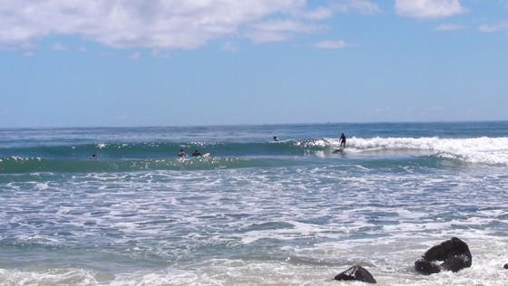 2016/01/14 10:18 Alxsandra headland Sunshine Coast Australia