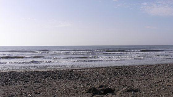 2016-04-18 7:05 片浜