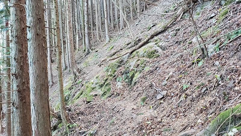 真富士俵峰登山口から大滝へ